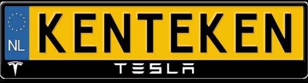 Tesla-logo-kentekenplaathouder